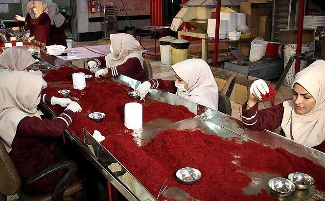 سود بسته بندی زعفران